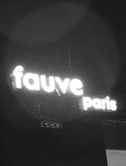 fauveparis_images_inaugurales